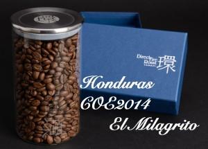 HondurasCOE2014