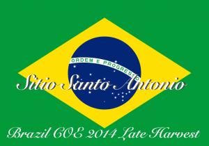 Brazil_2014LH_Antonio_PR