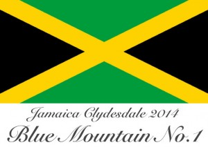 Jamaica_Final_mini