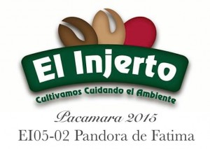 El_Injerto_Auction_2015_mini