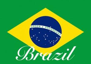 BrazilCOE2014_mini