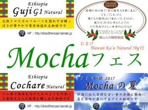 MochaFes