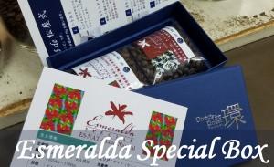 Gift_Esmeralda