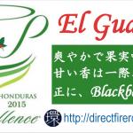 HondurasCOE2015ElGuayabo
