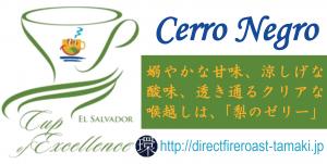 CerroNegro