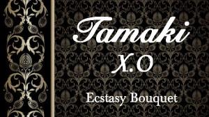 TamakiXO
