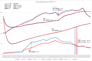 MarioEnero焙煎グラフ