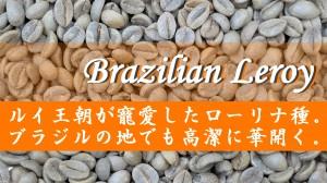 BrazilianLeroy