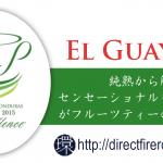 ElGuayabo