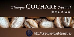 cochare2019