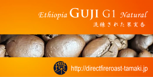 guji2019