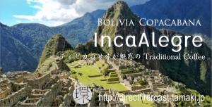 BoliviaIncaAlegre