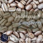 Wahana_Longberry_Washed