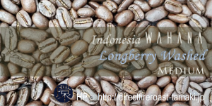 Wahana_Longberry_Washed