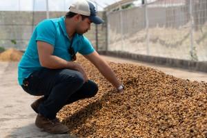 cafeimportscostaricalaslajasar-3-2500