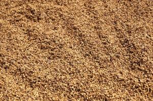 cafeimportscostaricalaslajasm-1-2500