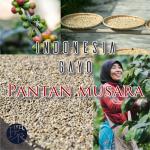 PantanMusara