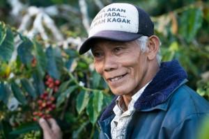 cafeimportssumatraar-8